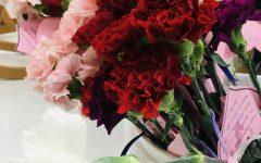 Valentine's Day carnation sales